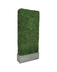 Boxwood Hedge with Planter