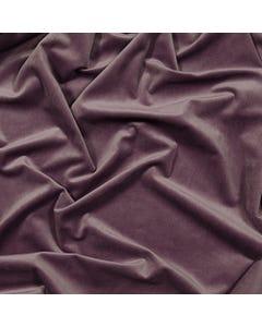 Lavender Velvet